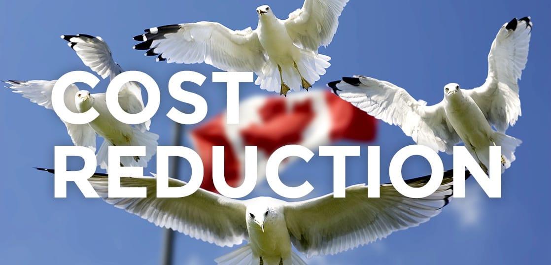 カナダ留学は工夫で安くなる!留学費用を2割も安くする5つのカンタンな方法!