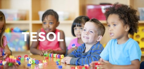 英語教師を目指す人だけのものではない!あなたはまだTESOL英語教授法の本当の魅力を知らない!