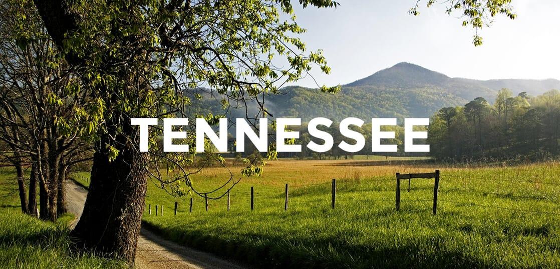 都会派?田舎(地方)派?アメリカでの田舎留学の魅力をたっぷりお伝えします!