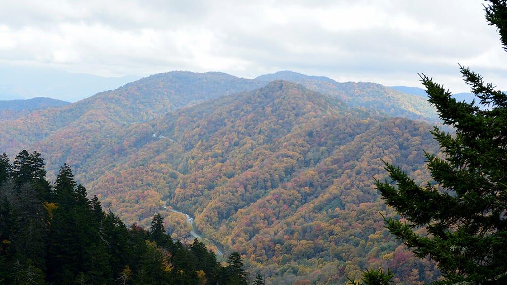 テネシー州の野外のアクティビティ1