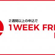 人気語学学校「LaL」とのコラボ企画!iae留学ネットだけの授業料最大50%OFFキャンペーン!8/31まで!
