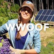 カナダでファームステイを体験できるWWOOF(ウーフ)の魅力