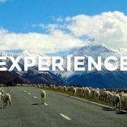 【留学体験談】ニュージーランドでの高校3年間の留学で得た経験