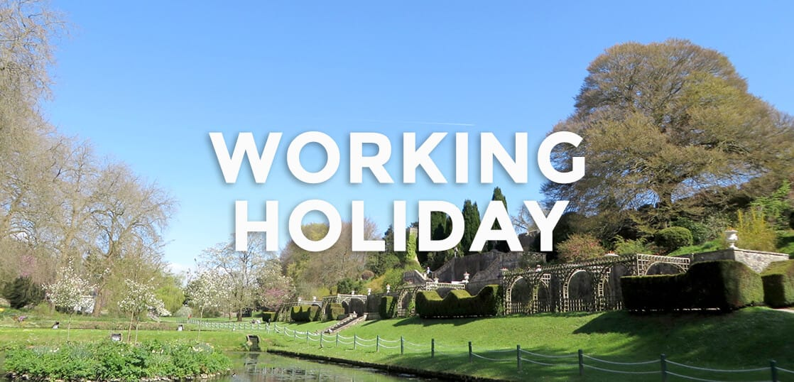 【留学体験談】イギリスワーキングホリデーでの仕事や旅行の体験談