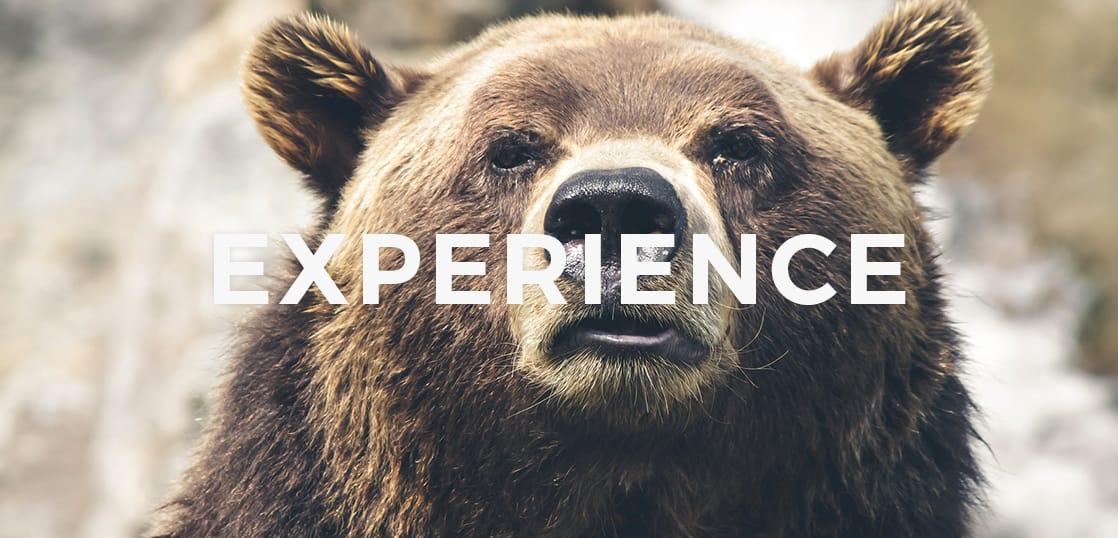 【留学体験談】カナダ留学!憧れの留学を成功させるためのコツとは?