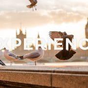 【留学体験談】イギリスワーキングホリデー、ワーホリ10ヶ月でもTOEIC130点アップ