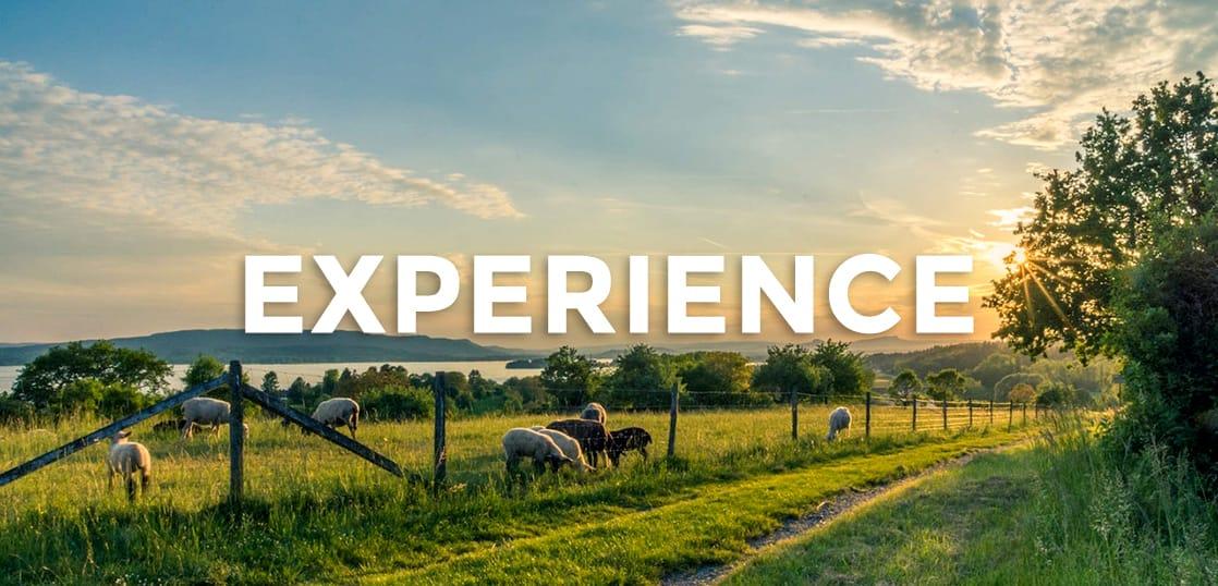 【留学体験談】オーストラリアの田舎に住んで感じた3つのメリット