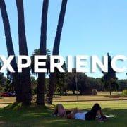 【留学体験談】一生の仕事を見つけるきっかけをくれた私のシドニーワーホリ体験談