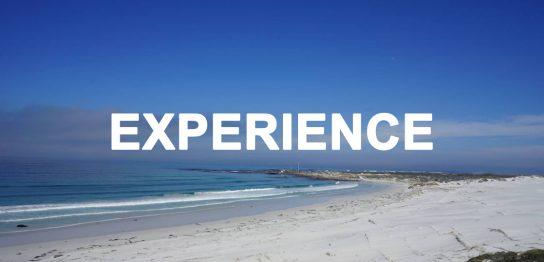 【留学体験談】南アフリカでの短期留学(大学生、春休み留学)