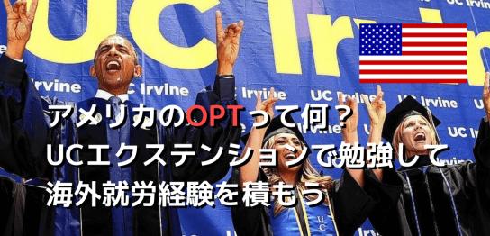 OPTって何?