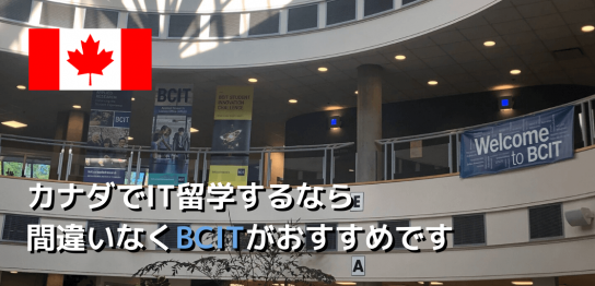 bcitinfotop