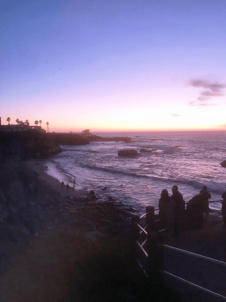 留学体験談 カリフォルニア大学サンディエゴ校